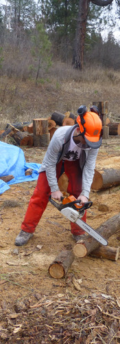 Chainsaw Certification 1