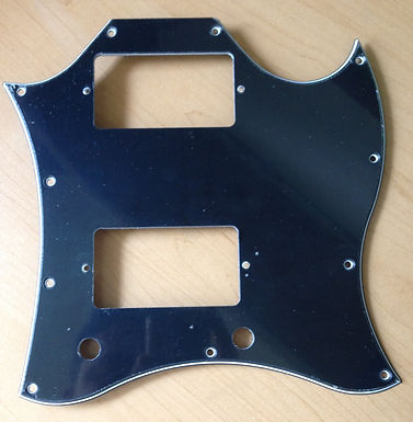 PIckguard full face SG