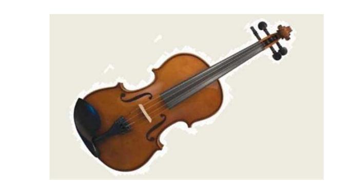 Violin Alfred Schroetter 4/4 AS/060-V