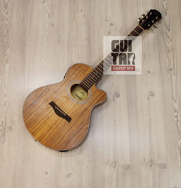 Guitarra Electroacustica Aria FET-T1