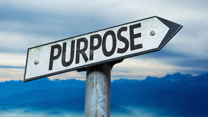 What is actually the purpose of our lives?