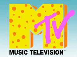 Scriptwriter: MTV's Faking the Video