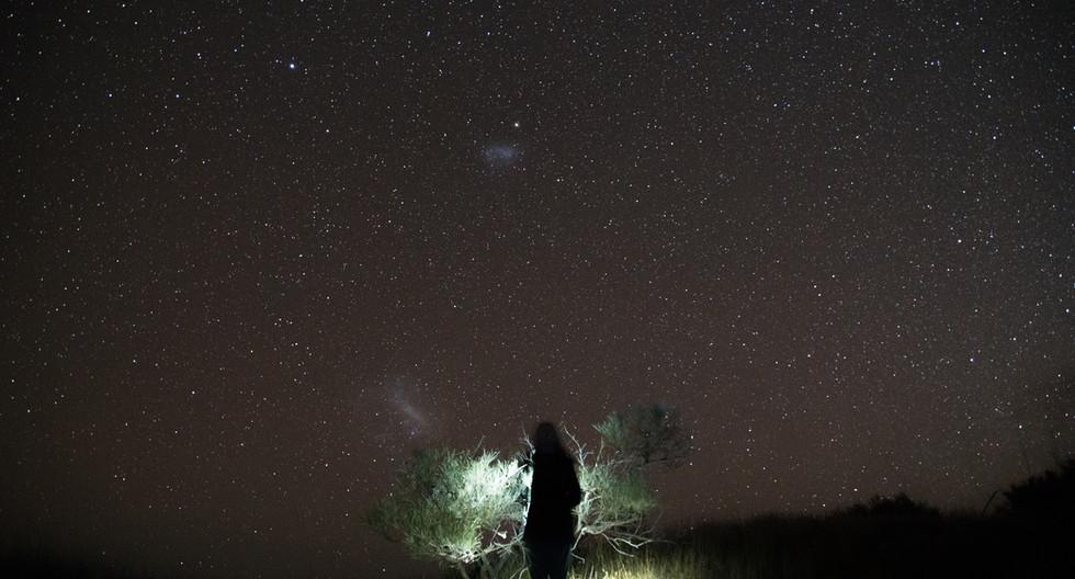 bush and stars.jpg