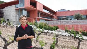 Entrevista a Eva Navascués, Doctora en Biología y Enóloga