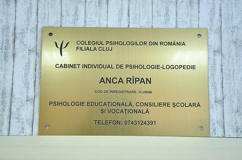 Placa indicatoare cabinet psihologie - 40 x 30 cm