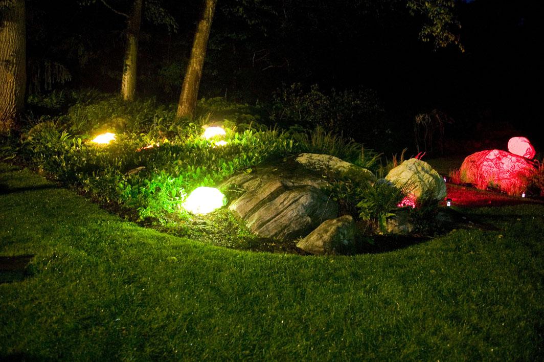 Garden - night