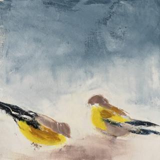 Two Birds, 2017