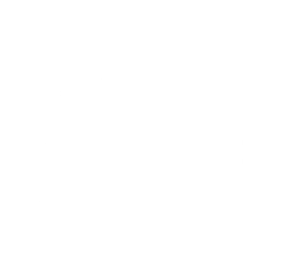 canvas-prices copy.png