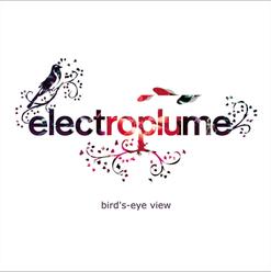 Electroplume BirdsEyeView