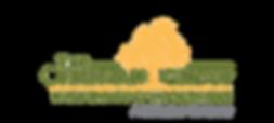 ChapmanGroup_Large - Logo.png