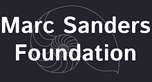 Copy of MSF logo reverse (CMYK).tif