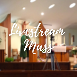 Copy of Sign-up for Mass!.png