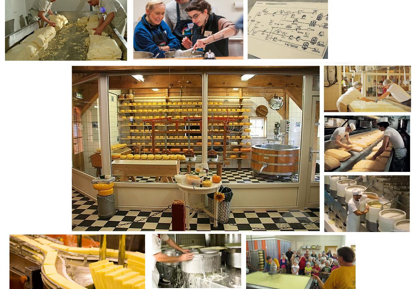 Byrne Dairy CheeseBryne Agro Tourism Center_Ramsgard