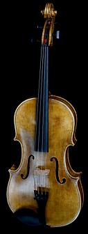 Viola .png