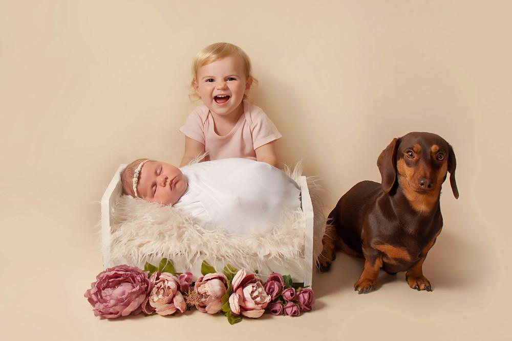 baby photography.jpg