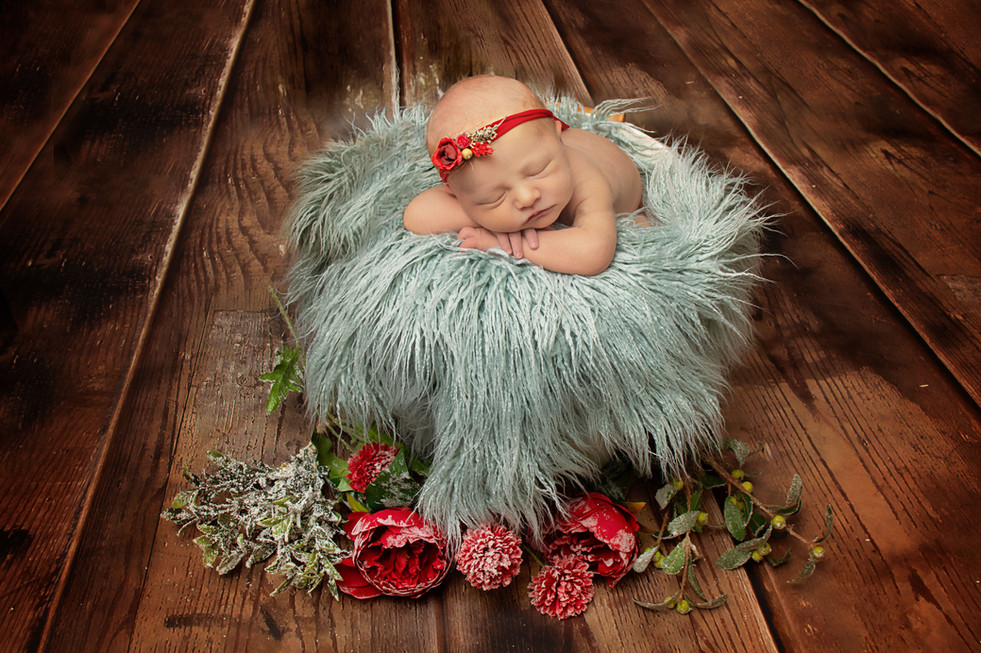christmas newborn photo.jpg