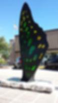 Tailed Jay.jpg