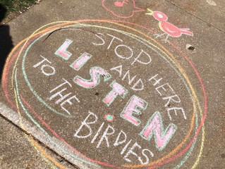 Stop Here and Listen to the Birdies