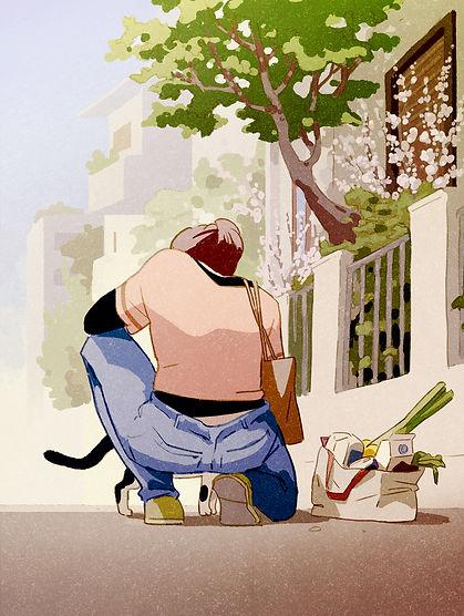 pet-cat2a.jpg