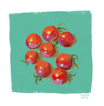 ig-tomatoes1a.jpg