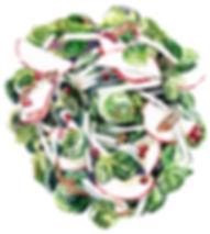 apple-salad.jpg