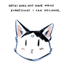Ooshi expressions