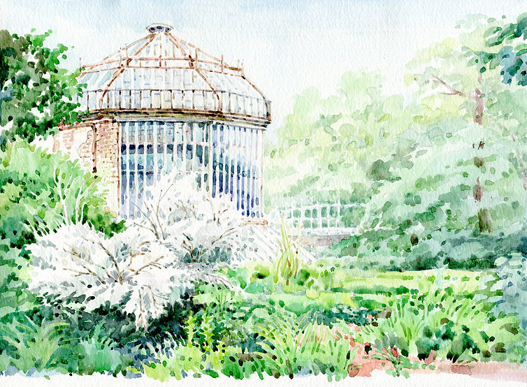 gradina-botanica.jpg