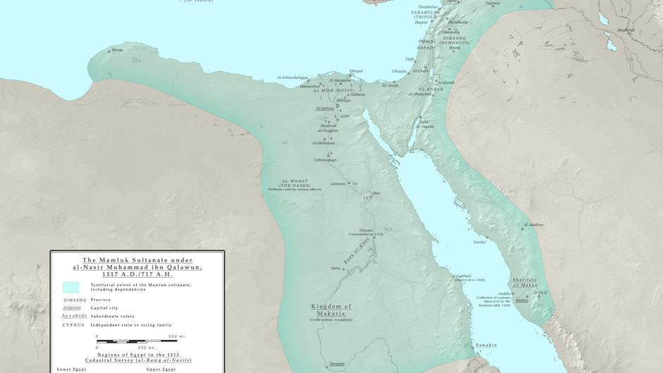 """""""Bring Us The Lame One!"""" The Disabled Sultan of Medieval Egypt"""