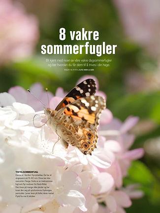 8 vakre sommerfugler.jpg