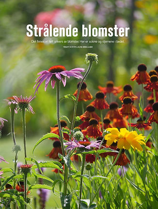 Strålende blomster-1.jpg