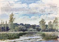 The River Test, Morning Light