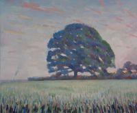 Oak at dawn