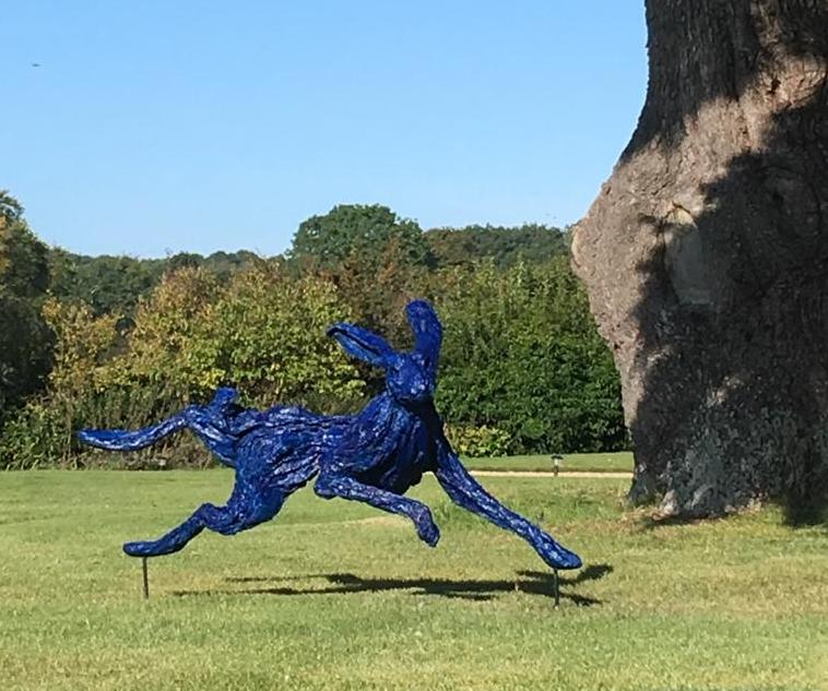 Electric Blue Hare