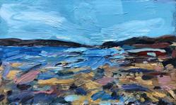 Rock Pools, Low Tide, Daymer Bay