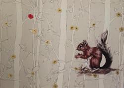 Red squirrel nutkin