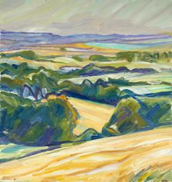 'Closed Field'