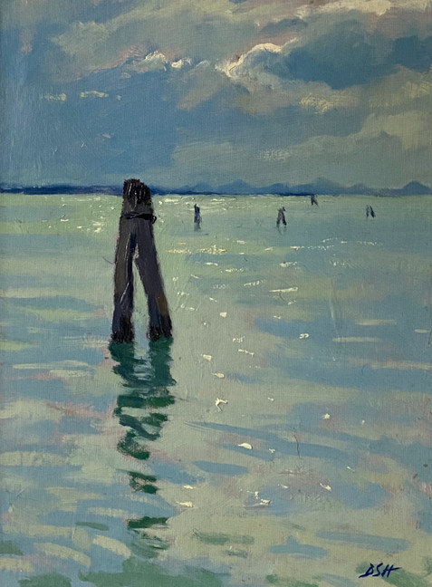 Evening light, the lagoon