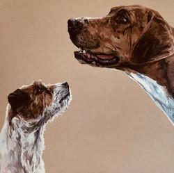 Warwickshire and Terrier