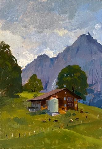 Grindelwald summer, goats grazing
