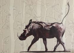 Warthog in a forest