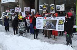 Anti Fur March