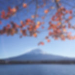 scenic-view-of-mount-fuji-601174.jpg