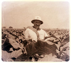 Kenneth Maxwell Herring Sr., working his tobacco fields, Circa 1965 - Trey Herring's Carolina Bourbon Whiskey - North Carolina