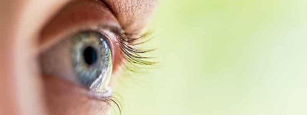 Topo Eye.jpg