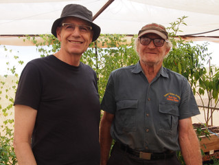 Max Emery to help new Bush Tomato growers