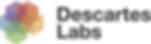 Descartes_Labs_Color_Logo_150916.png