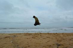 beach_070913-4.jpg