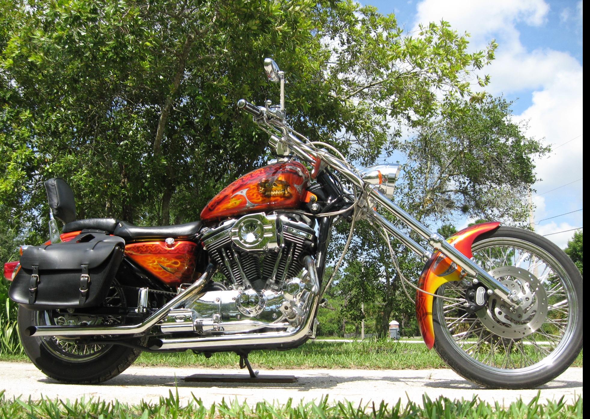 Harley-Davidson-Fantasy-True-Flame-Dragon-Skull-Bike