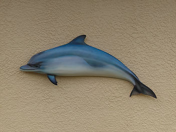Purpose_Dolphin_Fish_mount_Artist_Greg_c