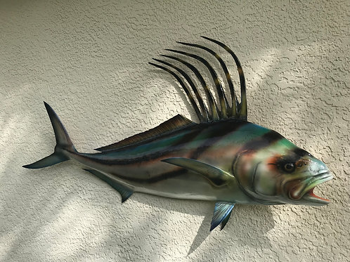 Roosterfish Natural Design